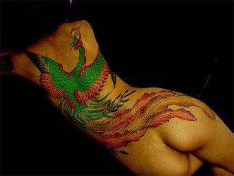 Phoenix Tattoo on a woman's back.