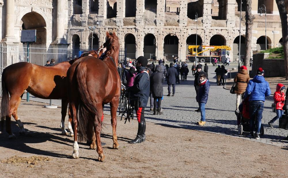 Rome-Horses.JPG