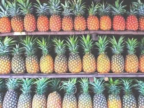 Tasty Pineapples!