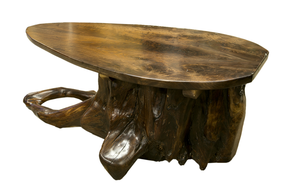 tree root Table-1.jpg