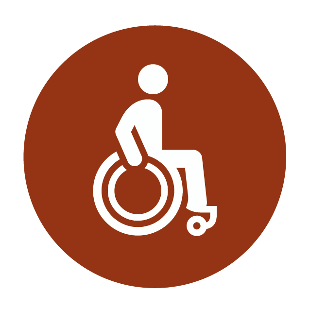 disabledaccessicon