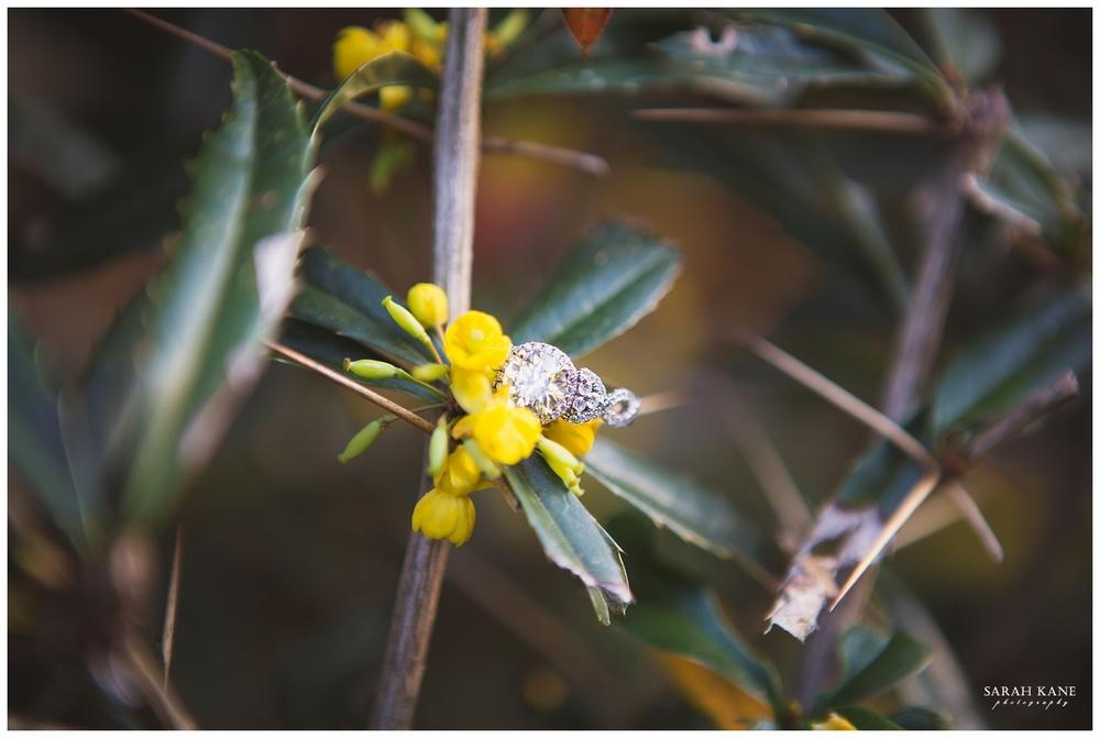 Engagement Photos_Sarah Kane Photography30 (2).JPG