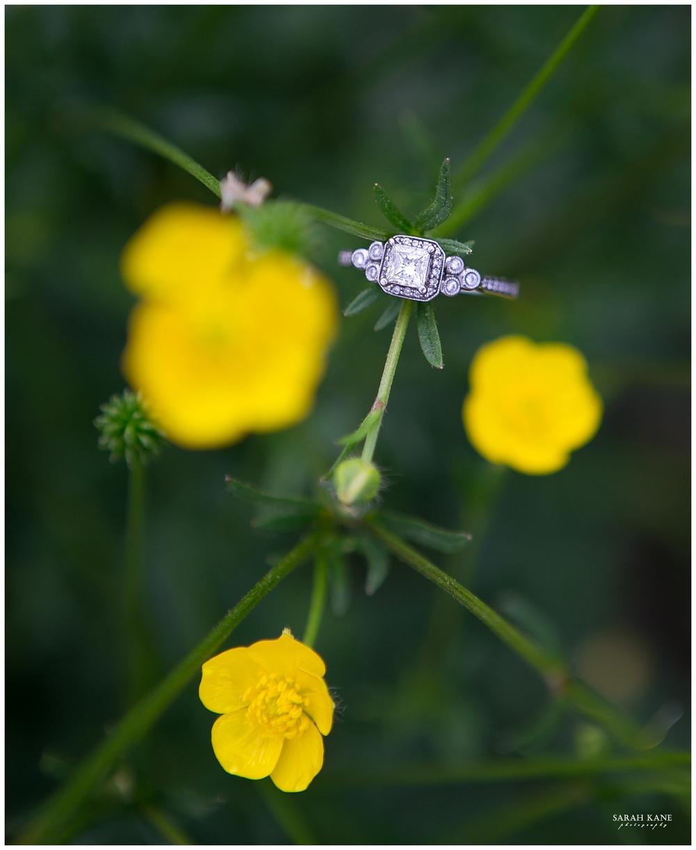 ring shots | Sarah Kane Photography