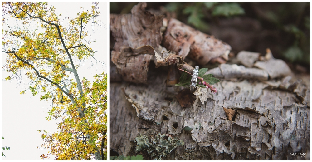 Final - Engagement at Forest Hill Park RVA -  Sarah Kane Photography 114.JPG