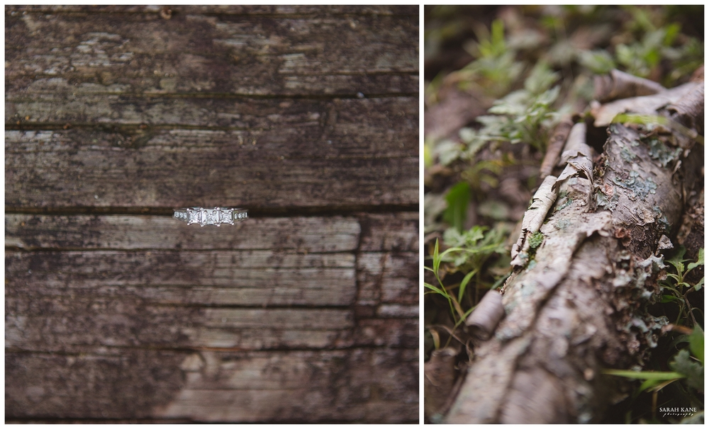 Final - Engagement at Forest Hill Park RVA -  Sarah Kane Photography 139.JPG