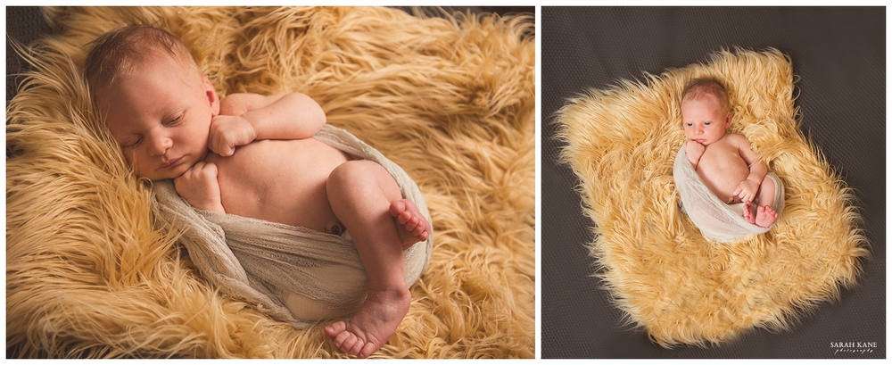 10_20_14 - Newborn Photography- Midlothian VA -  Sarah Kane Photography 023.JPG