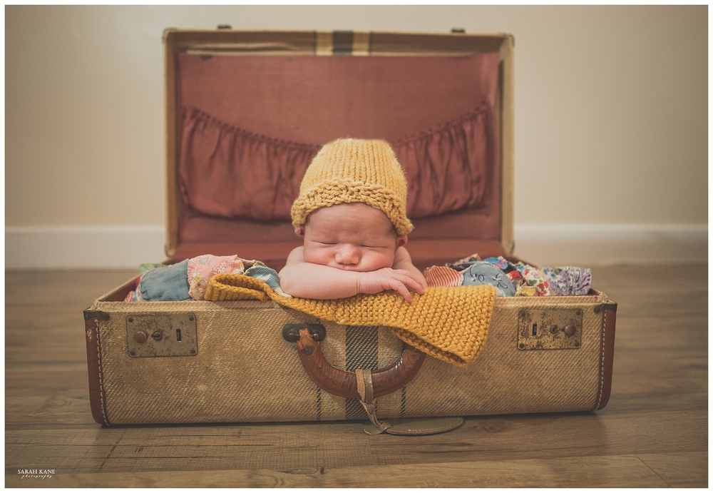 Newborn Portraits in Midlothian VA | Sarah Kane Photography