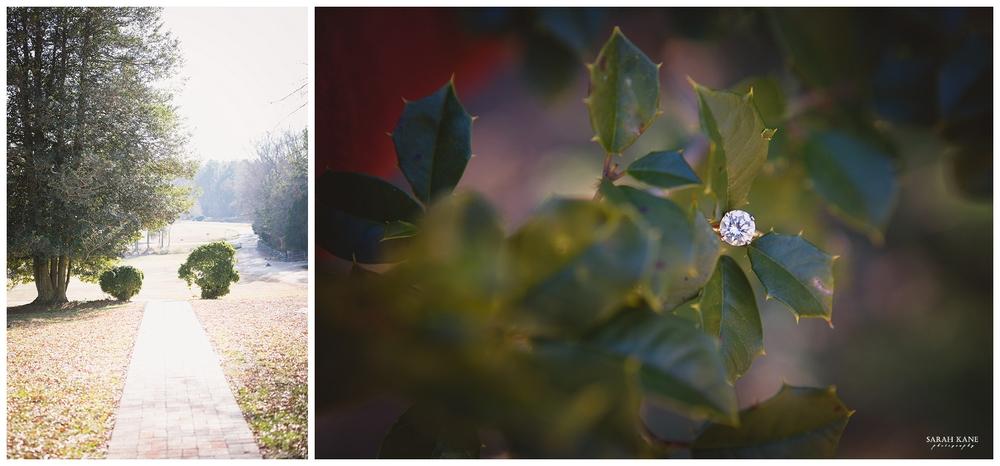 Engagement at Meadow Farms Glen Allen VA - Sarah Kane Photography098.JPG