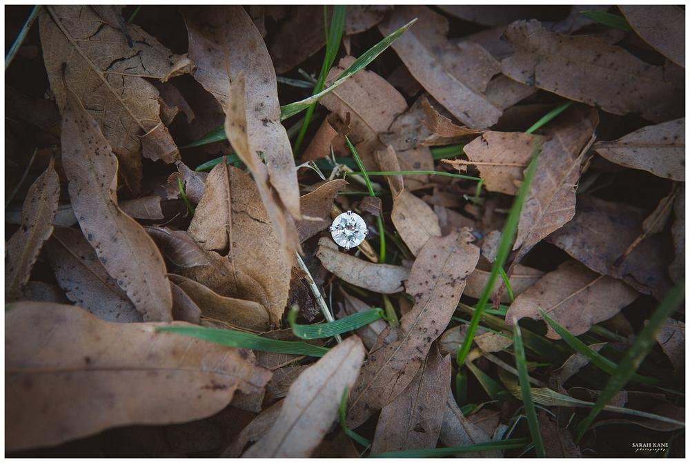 Engagement at Meadow Farms Glen Allen VA - Sarah Kane Photography145.JPG