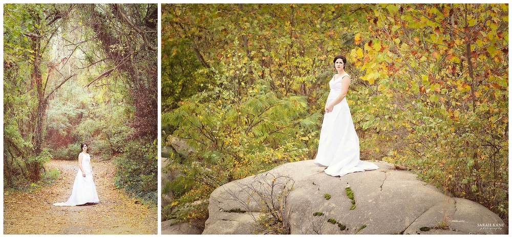 Bridal Portraits | Trash the Dress | Sarah Kane Photography