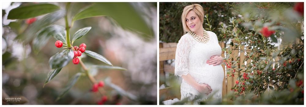 Emily Hudspeth - 001Maternity Photography - Sarah Kane Photography.JPG