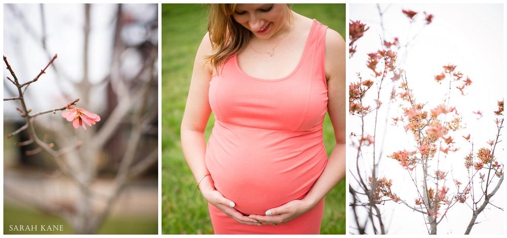 Maternity in Midlothian VA - Steves 005.JPG