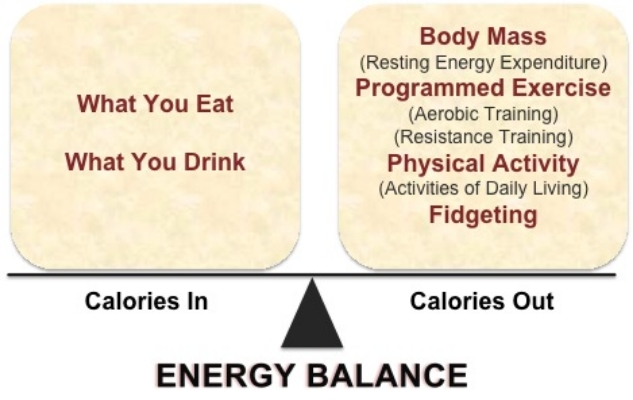 "Body mass is truly controlled by the simple ""calories in, calories out"" equation"