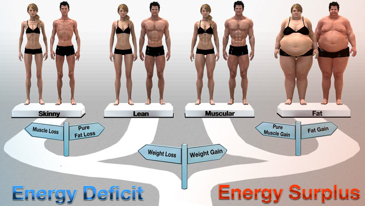 Figure 3: The Energy Balance/Nutrition Continuum.  The amount of food we eat and the amount of energy we burn contribute to where we find ourselves on the nutrition continuum.
