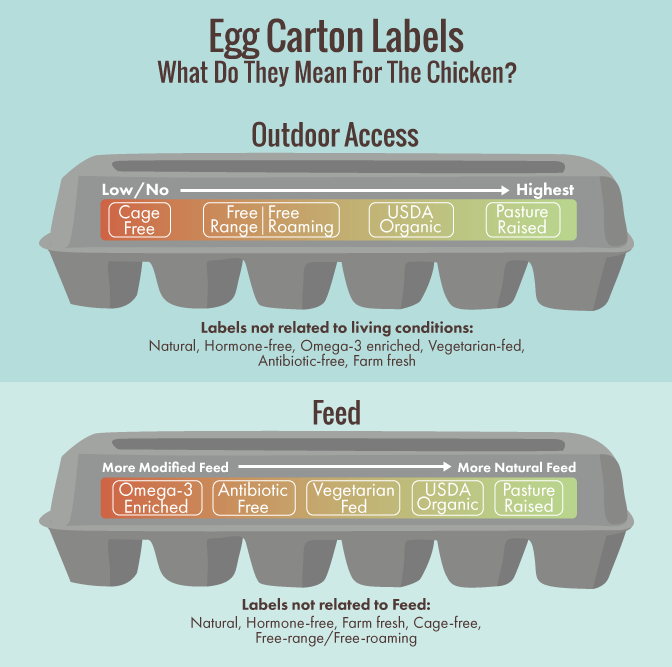 What Egg Carton Labels Really Mean for You and the Chicken courtesy  Andrea Moore .