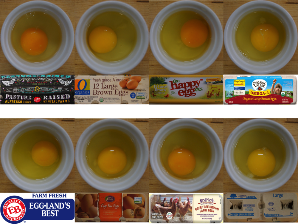 Eggs_with_Cartons_1.png