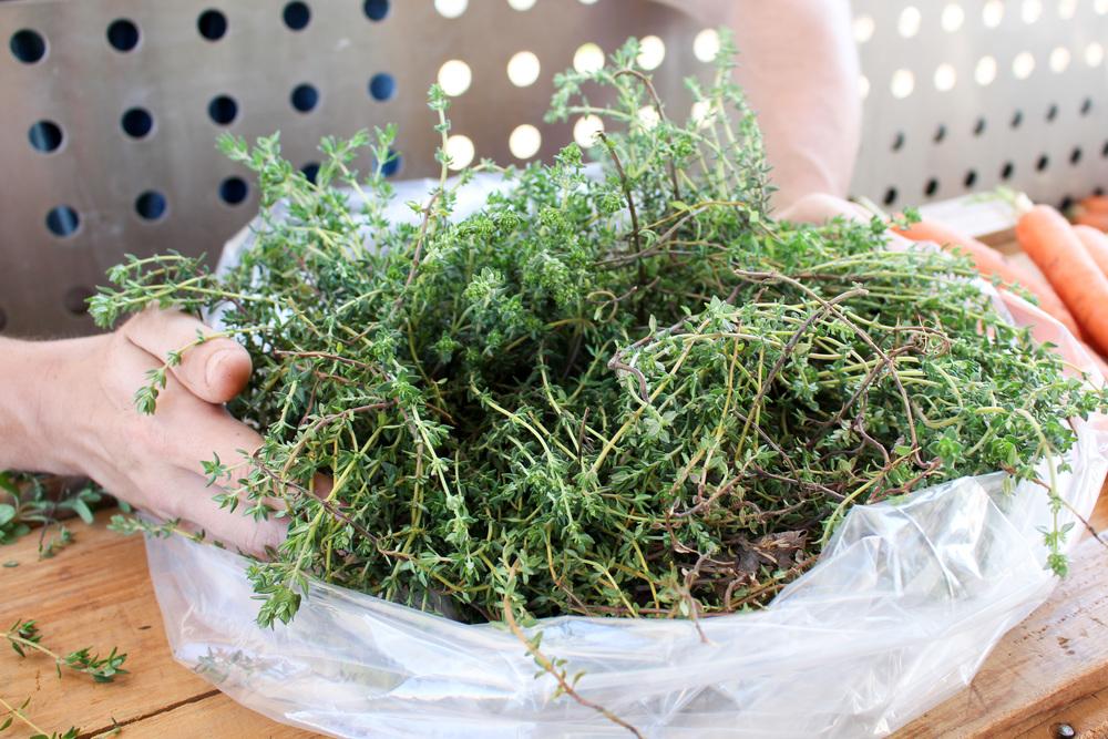 herb-2.jpg