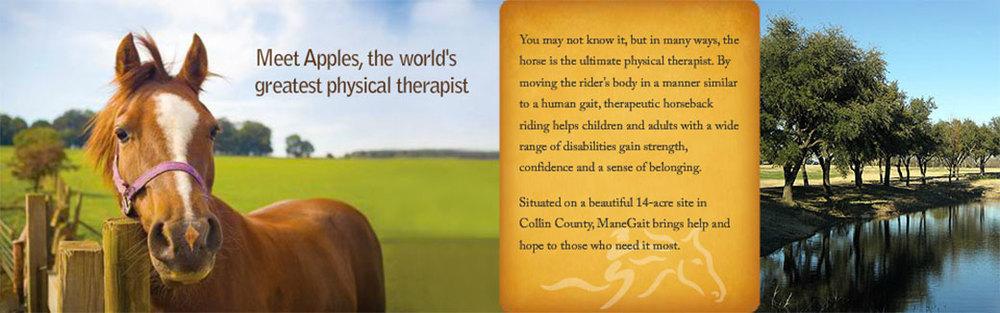 Mane Gait Therapeutic Horsemanship