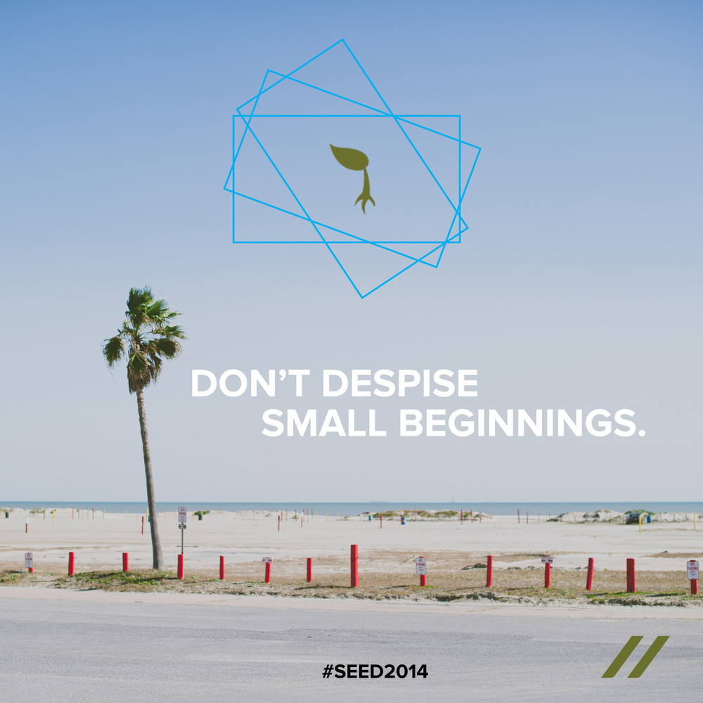 seed2014_day13.jpg