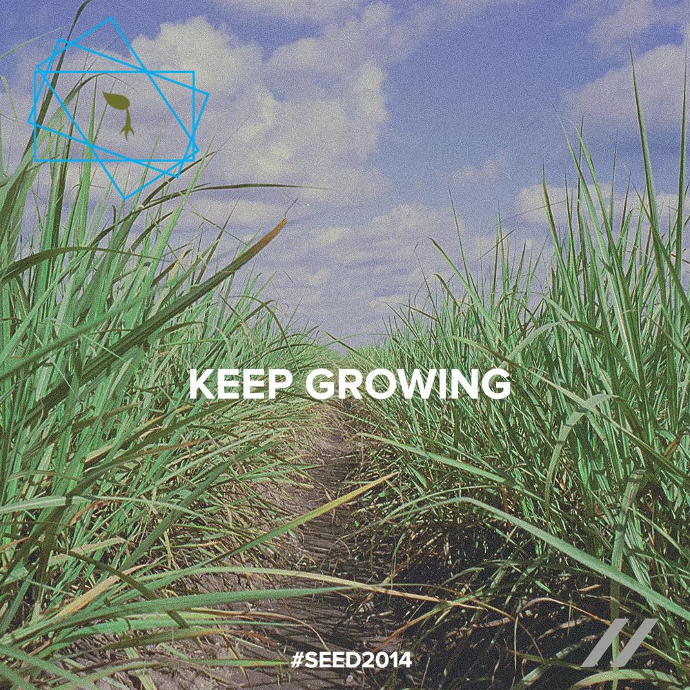 seed2014_day23.jpg