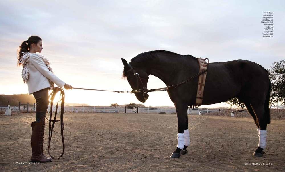genlux_horse_whisperer