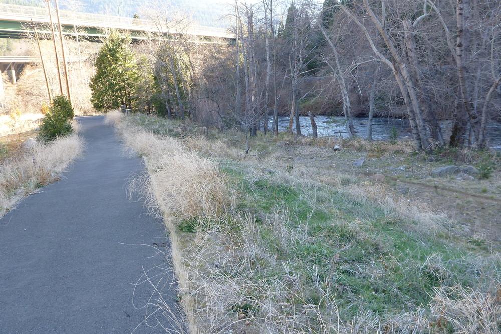 Tauhindauli Park River Trail