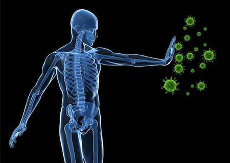 Spinal Problems Affect Immune System