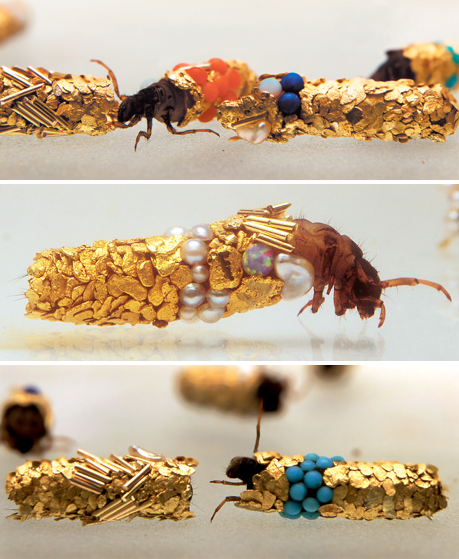 Caddis fly larvae are known to incorporate bits of whatever they can find into their cocoons, be it fish bone or bits of leaves. Hubert Duprat gave them gold, turquoise, gems and pearls.   This is the most amazing and beautiful thing I've ever seen.