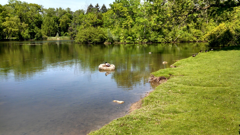 park pic 2.jpg