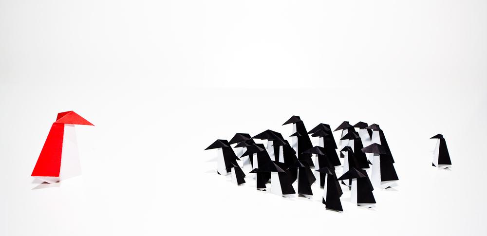 pinguin_IMG_1174.jpg