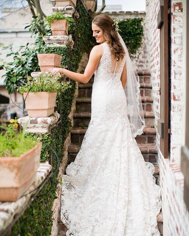 Melissa looks like she's in the Italian country side or something equally as stunning 😍  #emilyanddaniel #bridals #weddingdress #weddingphotographer #weddingday #bridalsession #openbackweddingdress #laceweddingdress #bridalphotographer #hairdownbridals