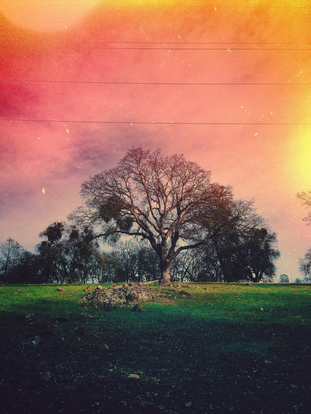Photo by Ciera Lagges in Auburn, California edited with Mextures App and VSCO.