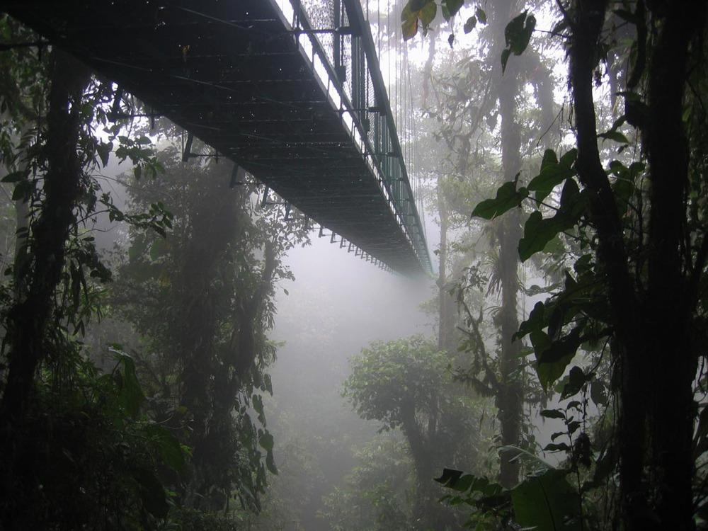 Monteverde Cloud Forest - Wikipedia