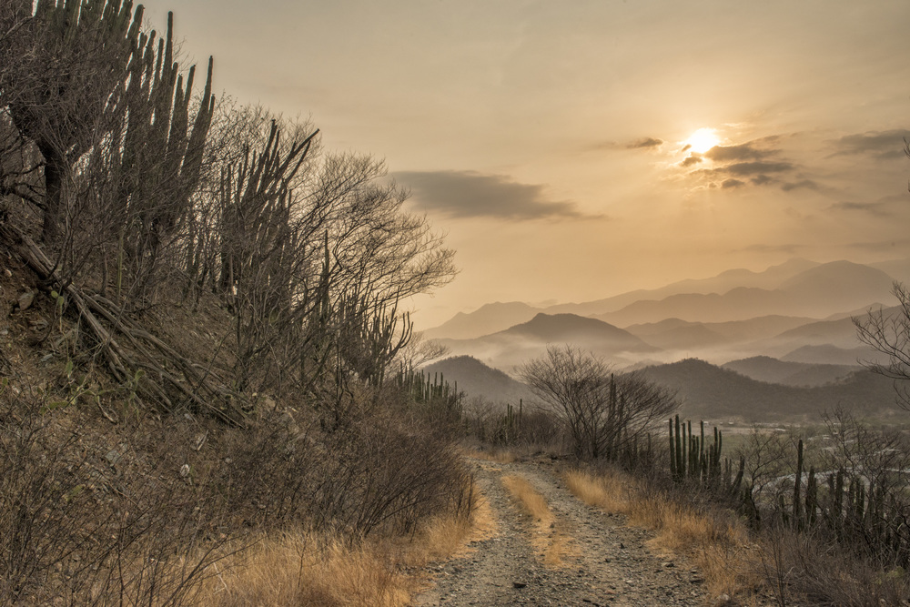 Dry Forest in the Sierra Nevada de Santa Marta, Colombia - Michael Bednar, Photographers Without Borders, 2015