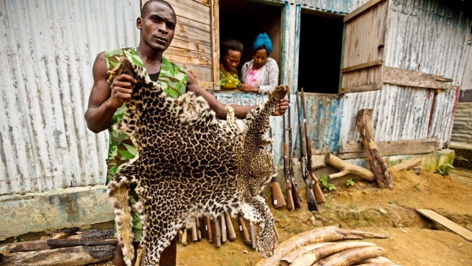 © James Morgan, World Wildlife Fund