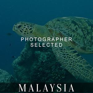 PS_malaysia-blacked.jpg