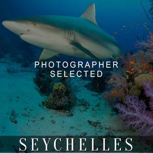 PS_seychelles-blacked.jpg