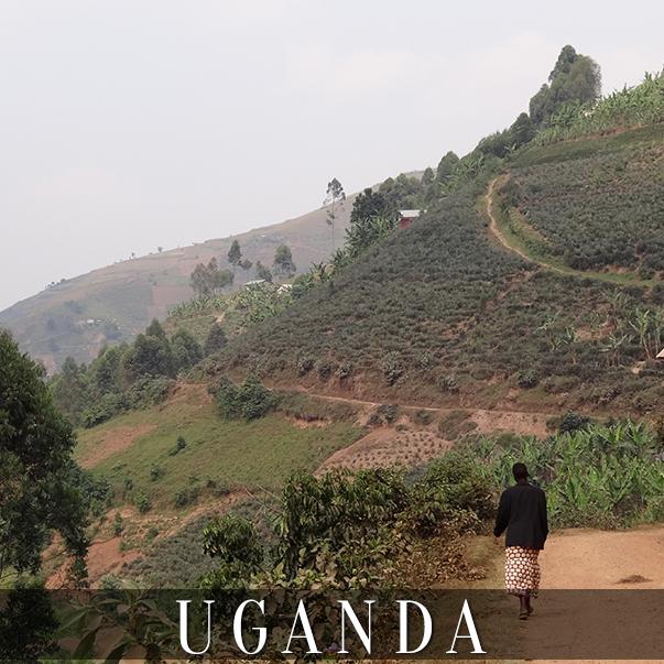 CO_Entebbe_Uganda.jpg