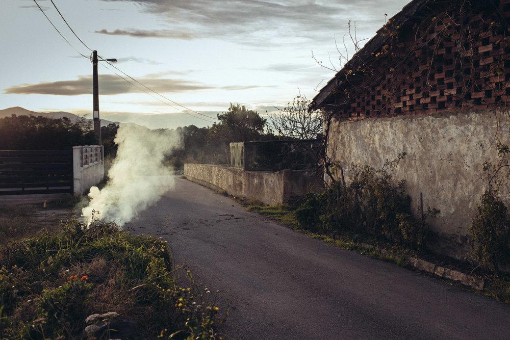 PHOTO: Daniel Regan