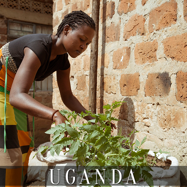 CO_uganda1-kampala.jpg