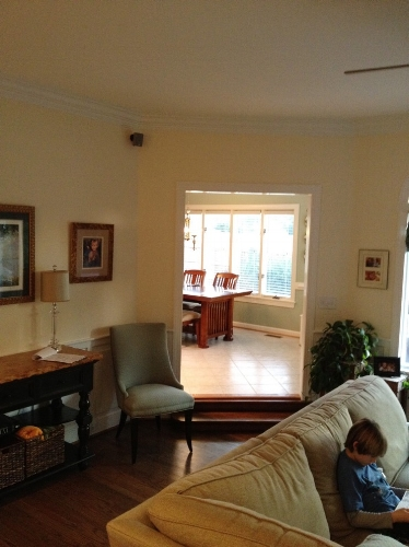 Kitchen Remodel Before Living Room