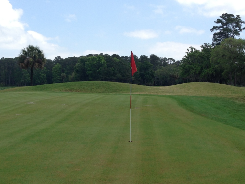 3rd green in 2013