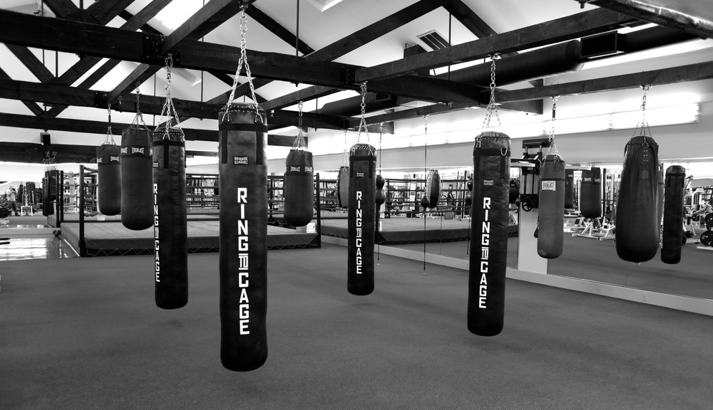 ABOUT — World Boxing Gym | Jersey City New Jersey