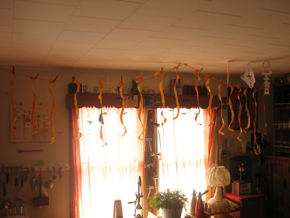 DryingPeels