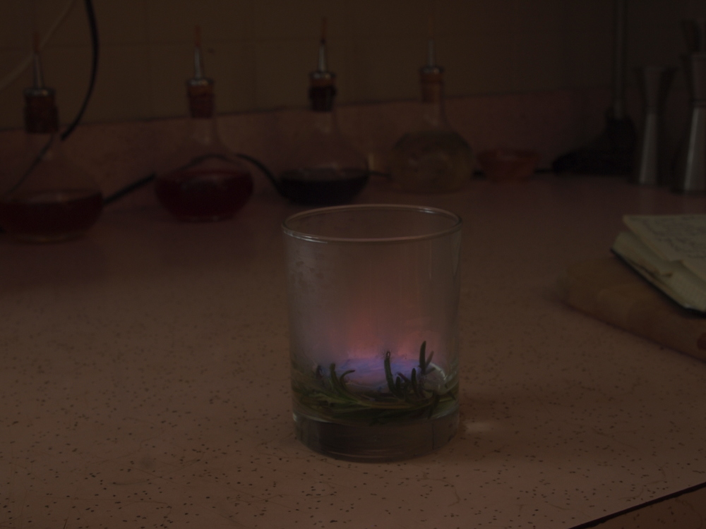 Ignite the Chartreuse and rosemary.