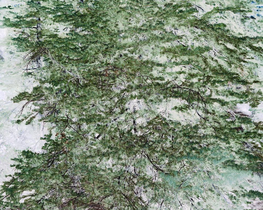 signalnoise-39.jpg