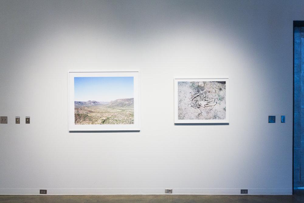 View, Aaron Rothman; Ouroboros, Michael Lundgren