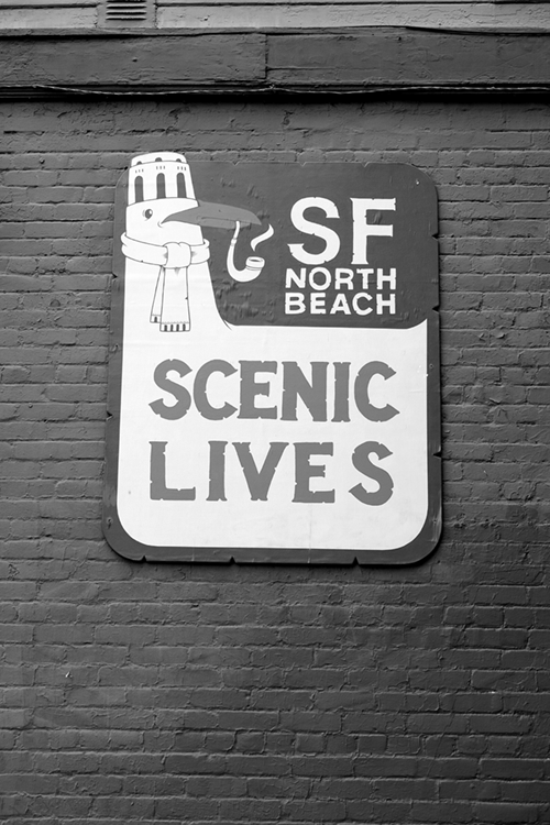 ty_north_beach19 copy.png