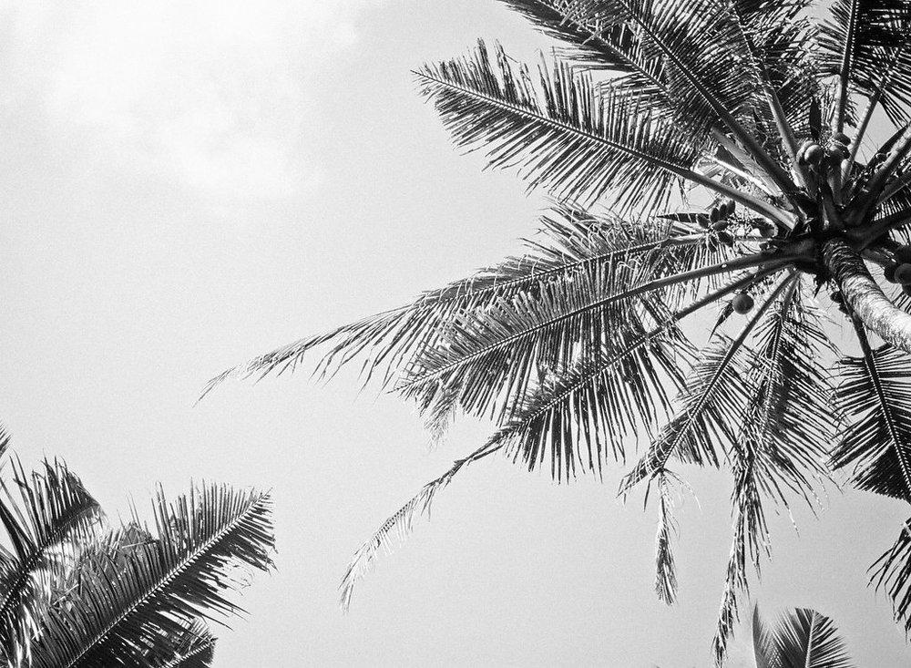 001_Bali_BW.jpg