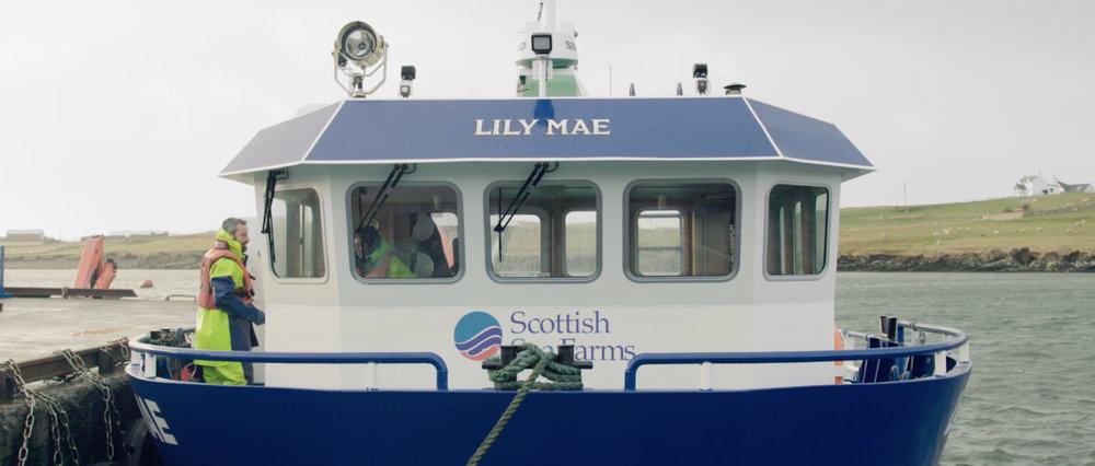'Powering People' - Shetland